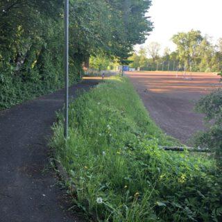 Westlicher Gehweg am Tennisplatz mit Blick nach Norden
